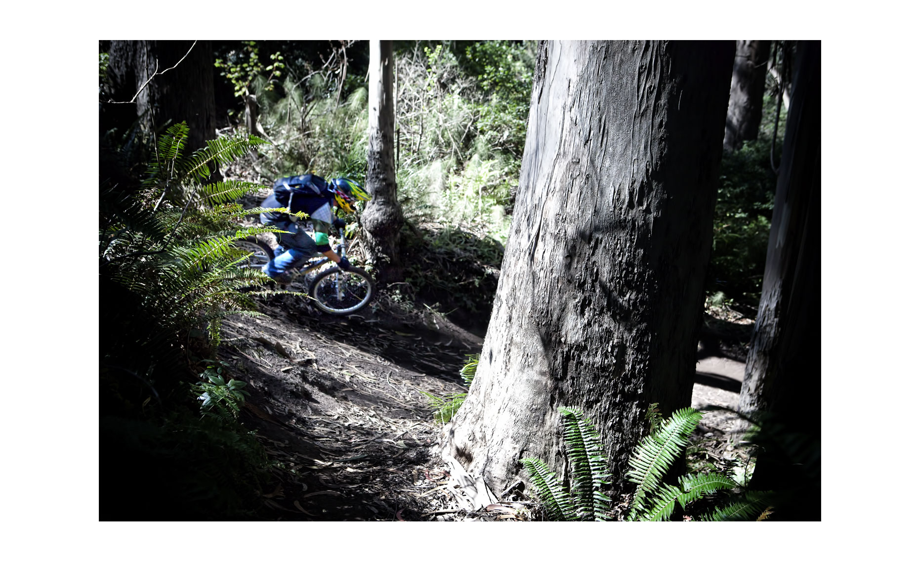 Mountain Biking | Neil Fraser Photography | Neil Fraser Photographer